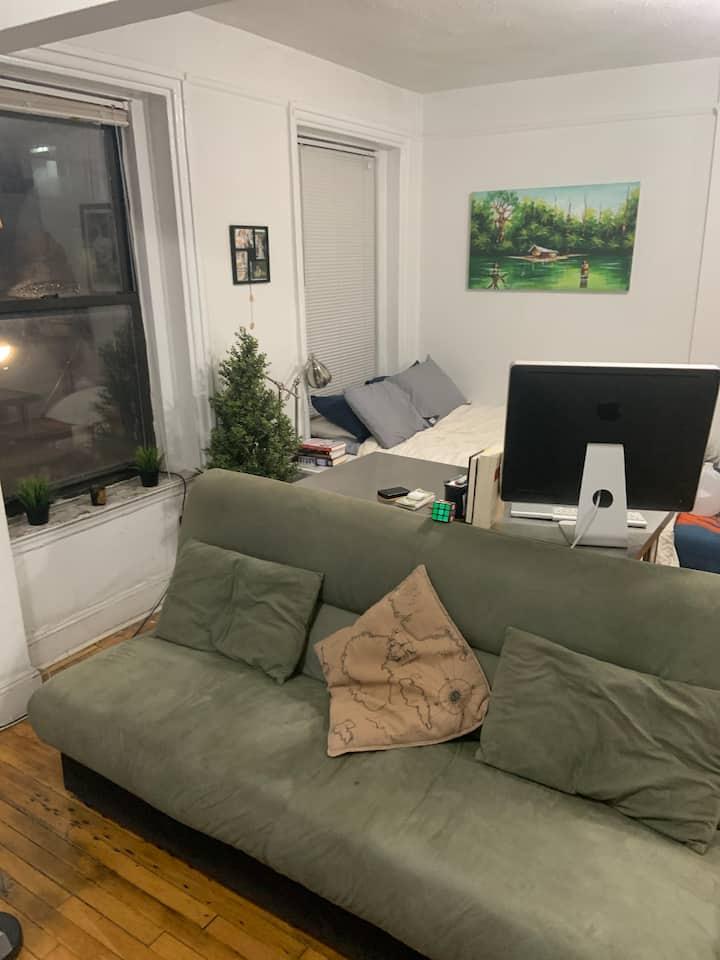 Cozy Downtown Brooklyn Studio Near Everything