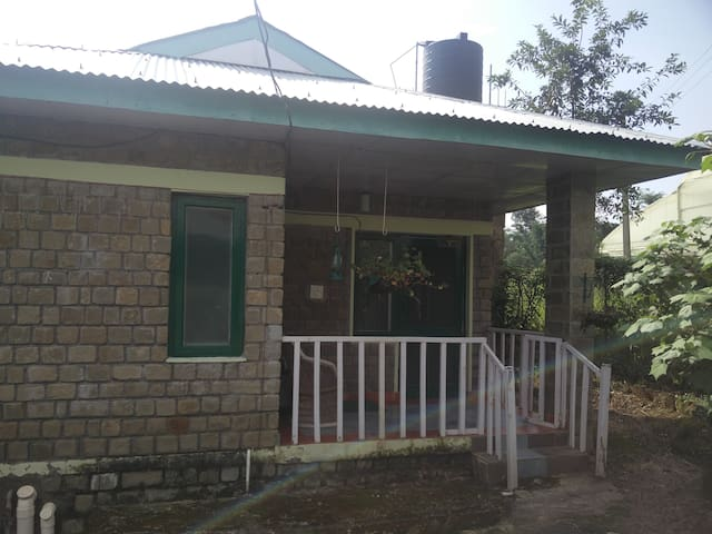 Tulip Cottage amidst fields at Nagri, Palampur