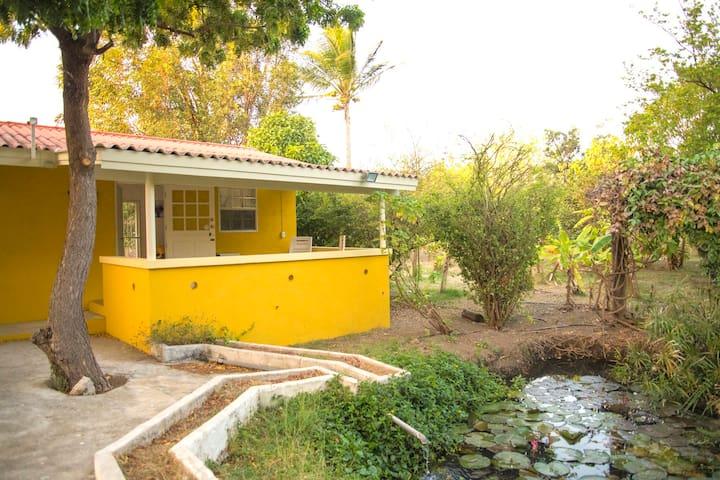 Green Garden Apartments Curacao - F