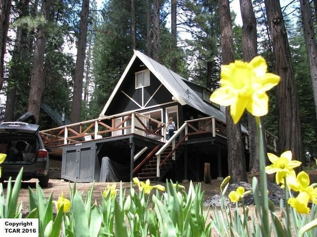 Analog Pinecrest Cabin - Long Barn - Casa