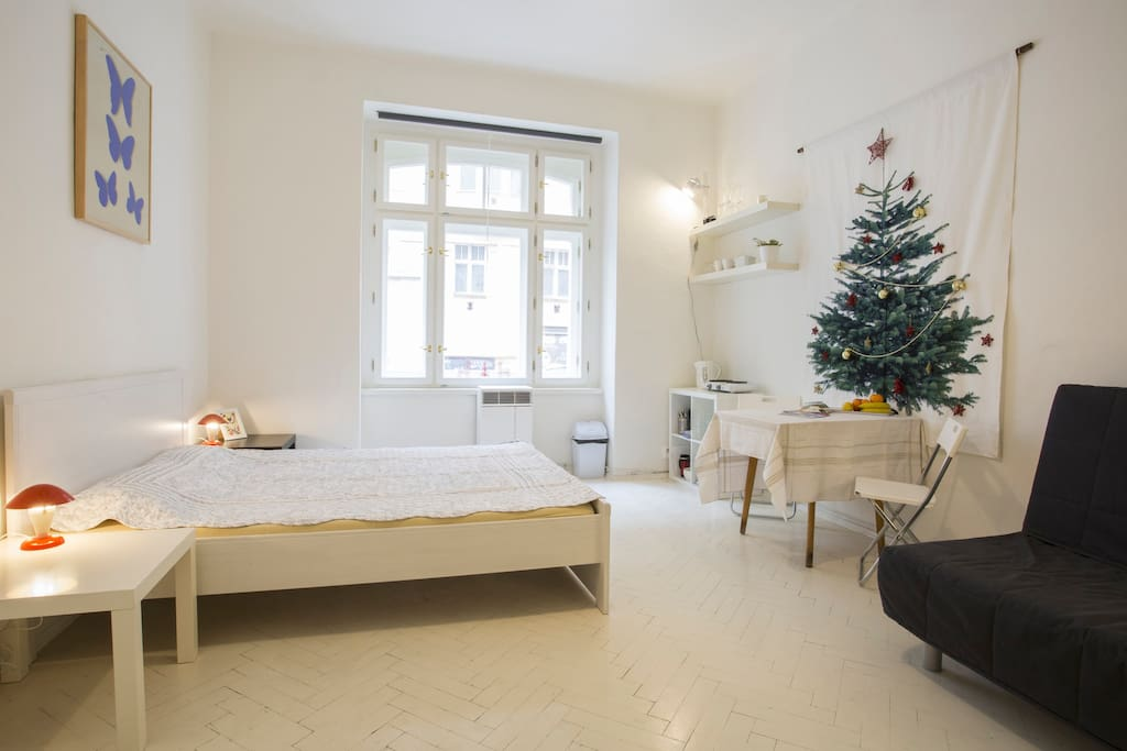 Small One Room Flat Near The Center