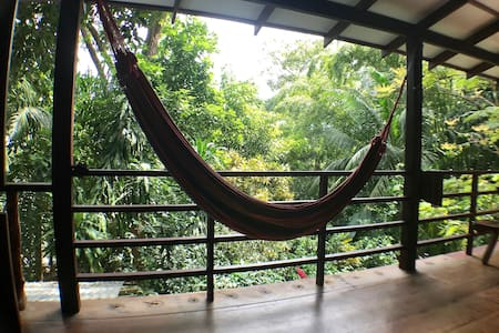 Dorm Bed with Breakfast | Jungla