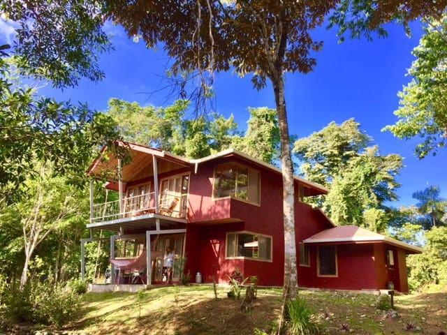Comfortable jungle experience in dreamy Punta Uva!