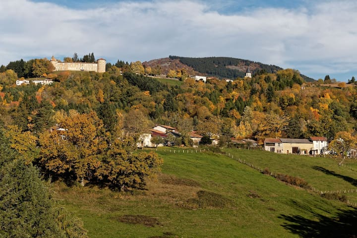 Maison avec vue panoramique - Vollore-Ville - Dům