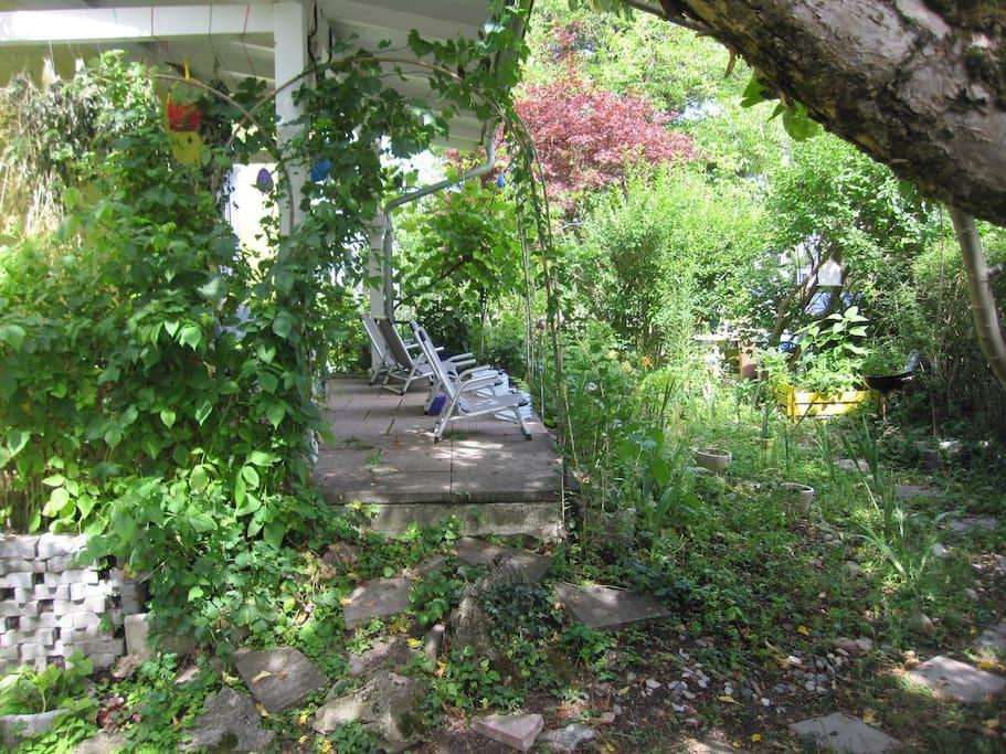 Süd-Terrasse unter altem Apfelbaum