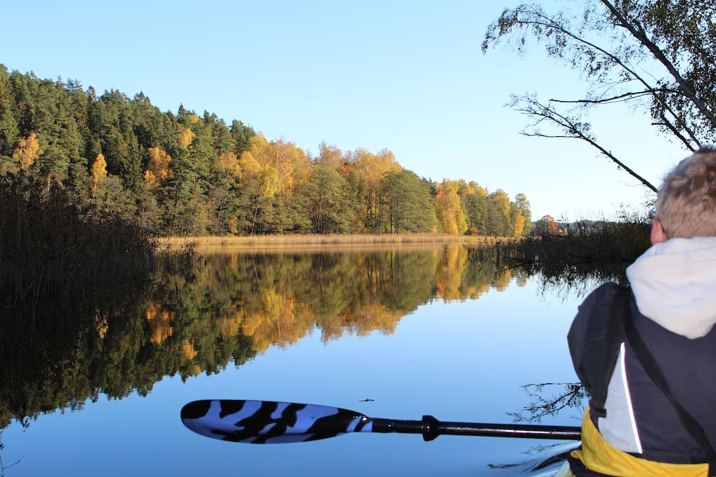 Book a guided kayak tour or just rent a kayak