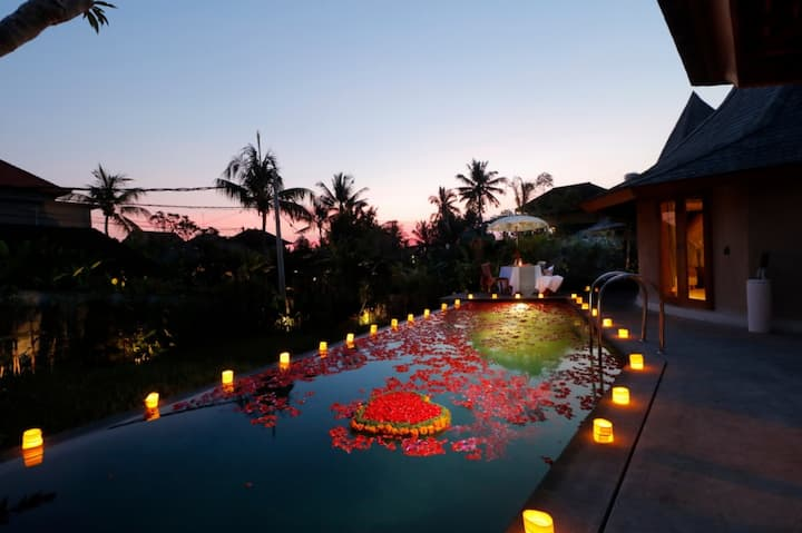 Contemporary Ubud Tropical Home