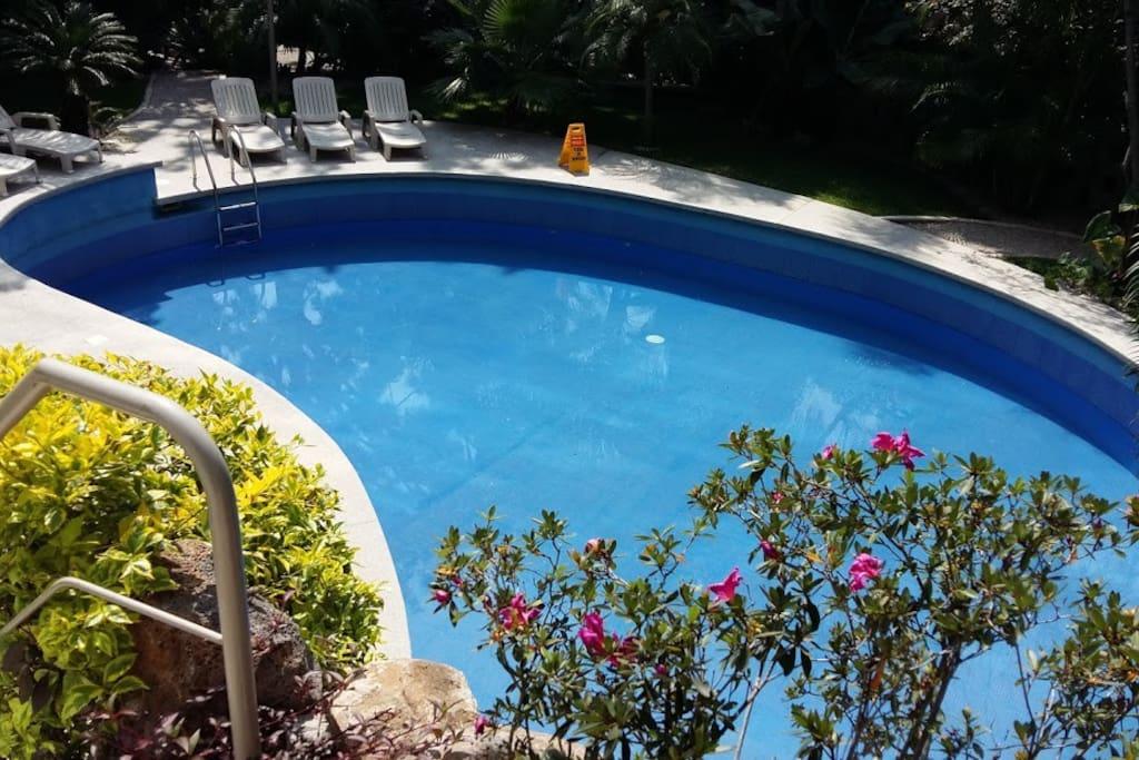 Bonita y soleada piscina