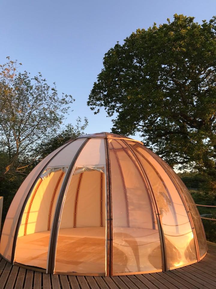 Reset at Oak Tree Dome - Tri