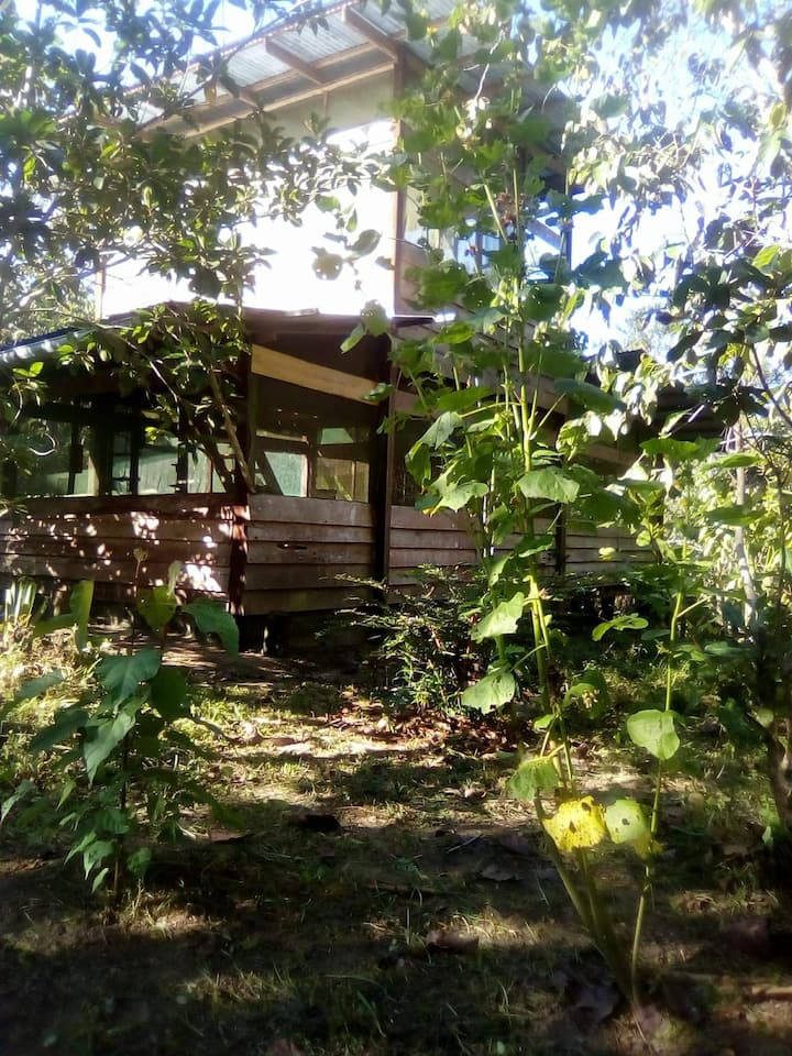 Cabaña tranquila en la jungla