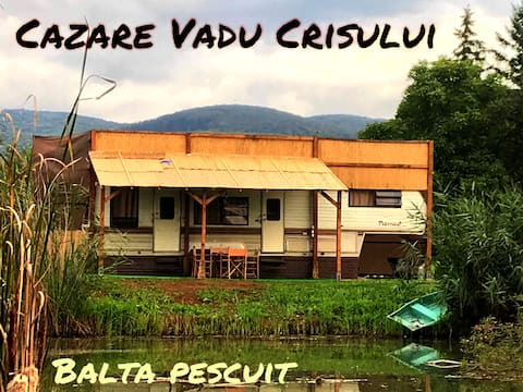 Honey Tiny Home near Lake - Cazare Vadu Crisului