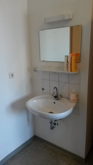 Sink in the room. Shampoo and soap for You.