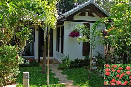 Ixora Cottage in villa garden - Tambon Rawai - Blockhütte