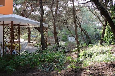 Holiday House with garden next sea - Platamona