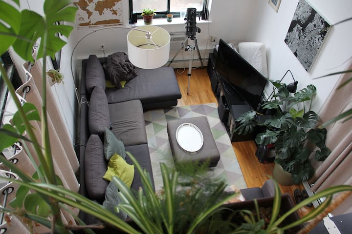 Huge Loft with 2 private patios! (no cat)