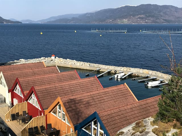 Oversiktsbilde over hyttene med båthavn og fjord.