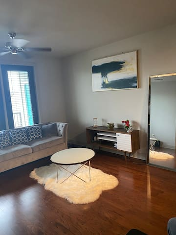 1BD/1BR Apt 5 Min to Midtown/Downtown/ Wash. Ave