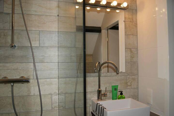 moderne badkamer douche toilet wastafel