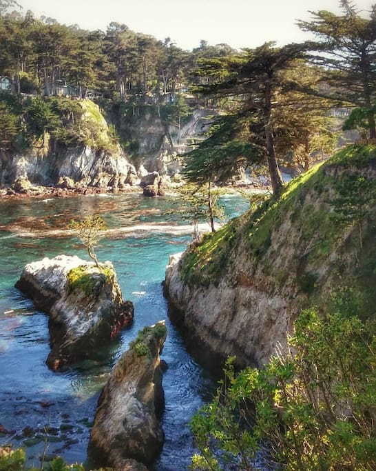 Point Lobos hike just minutes from the house.