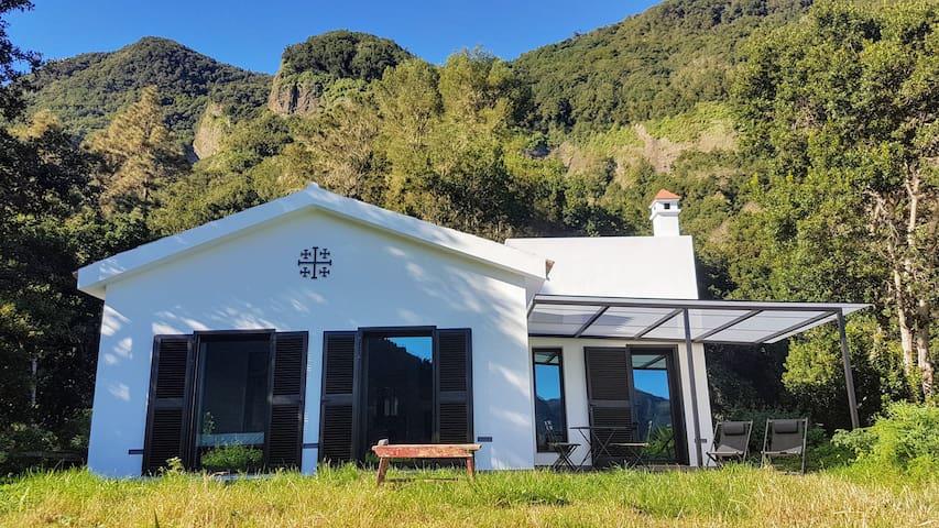 Forest House - 100% Solar