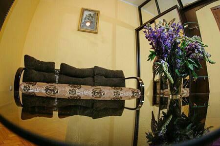 Уютная квартира для отдыха . - L'viv - Lakás