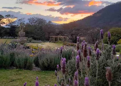 Cabaña tipo Suite en un hermoso Jardín de Lavandas