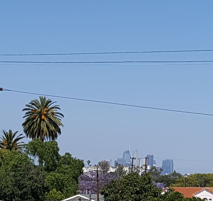 Downtown skyline view from your private balcony.