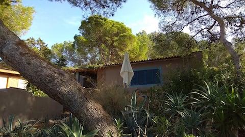 1-værelses lejlighed i Berbería