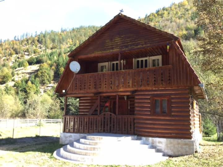 NEW!-Private room 2-Apuseni Mountains-Casa Albac