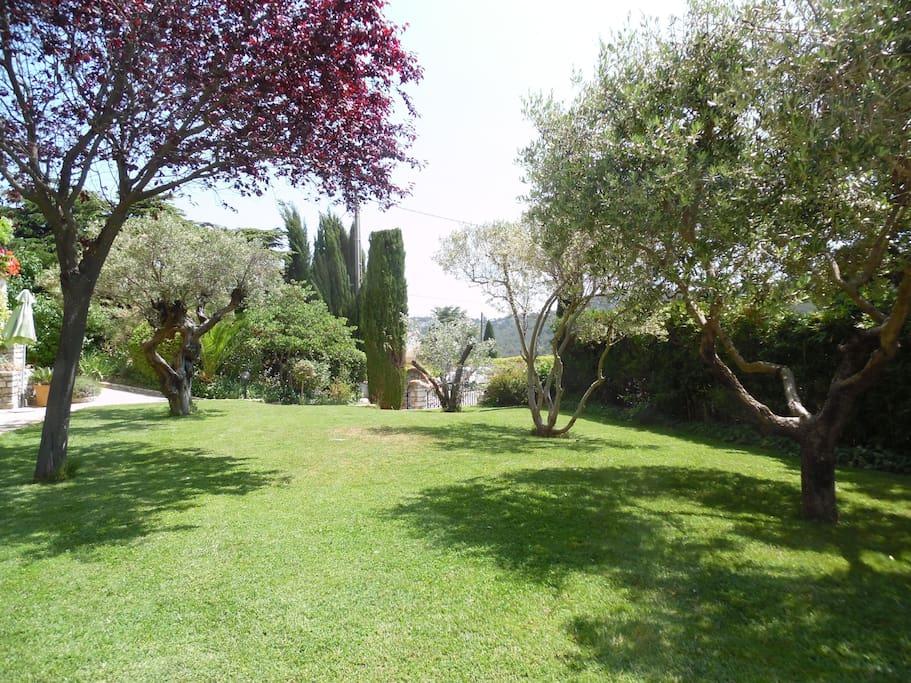 Jardin paysagé devant le studio