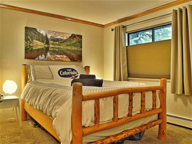 Entire 1br/1ba Bus Route Vail