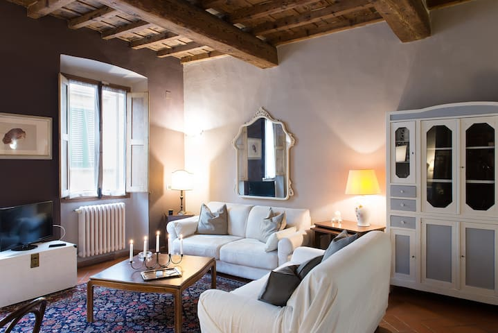 Charming central apartment Florence