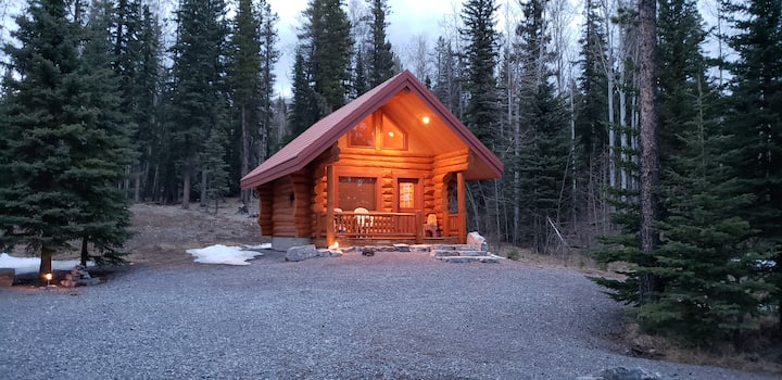 Little Nordegg Brazeau Cabin  Weekly Discount 20%