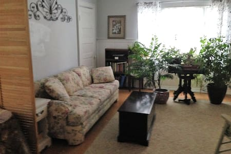 The Ideal apartment in Buffalo, New York - Buffalo - Apartemen