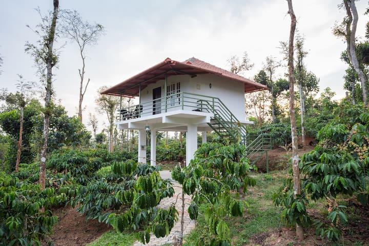 The Suvistara Wayanad -Siddhi cottage