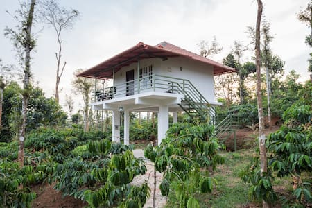 The Suvistara Wayanad -Siddhi cottage