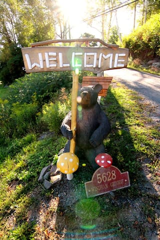 Daisy the black bear welcomes you!