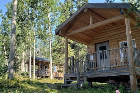 McCarthy Cabins — Swift Creek Cabin
