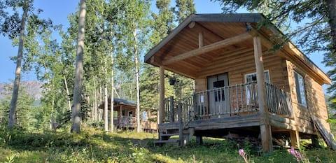 McCarthy Cabins — Swift Creek Cabin