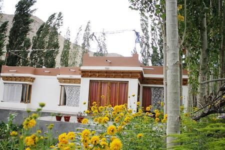 Ladakh Snymo homestay