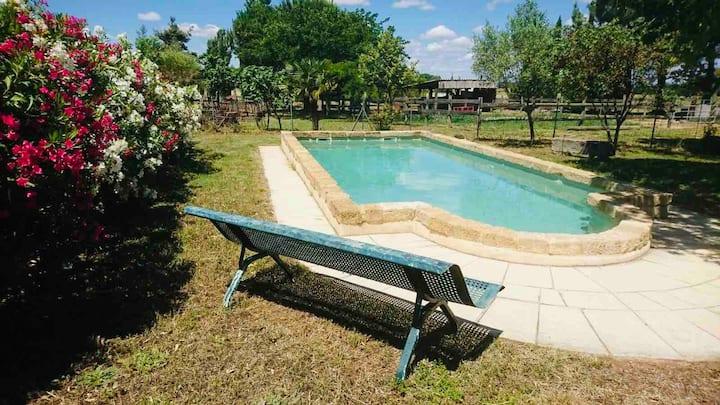 Gîte rural en Petite-Camargue avec piscine