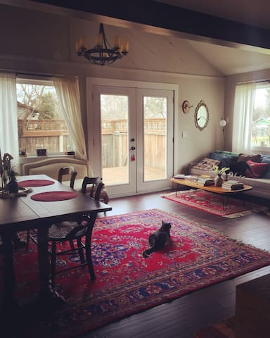 the common area is perhaps, too stately—and yet, perfect to showcase the beauty of the cats (foster cat pictured along with permanent resident kitty, Petunia)