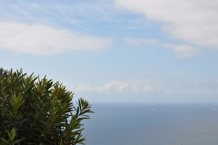 Apartment with sea-view in Cap-d'Ail, near Monaco - Cap-d'Ail - Wohnung
