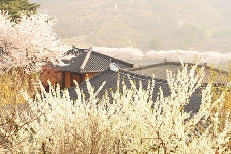 섬진강변 화개장터 매화마을 인근의 한옥 독채 2인실