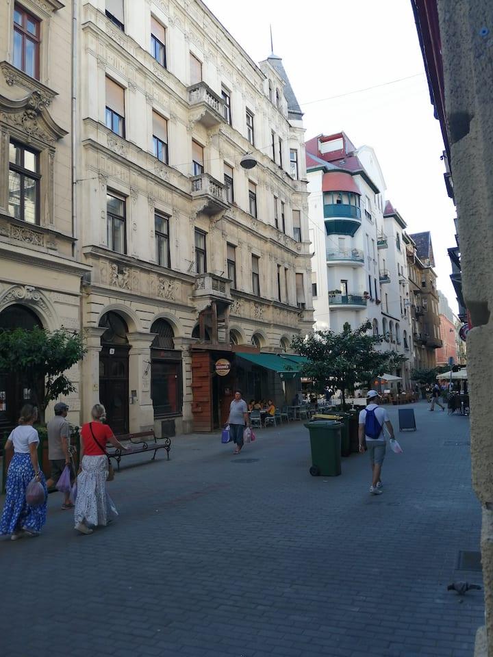 Chambre avec Lit Double au cœur de Budapest