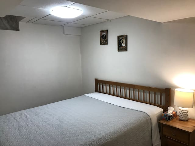 Newly renovated basement near Mississauga downtown