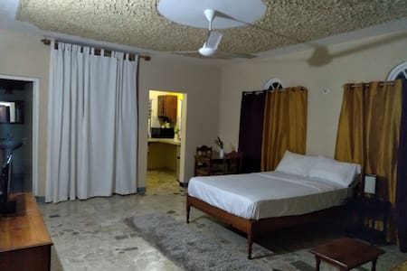 Jamaican Jypsy Deluxe Studio Apartment