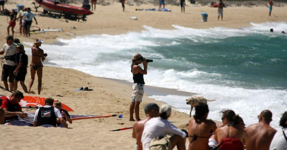 Naxos beach villa sea side for 16 - Mikri Vigla - Vila
