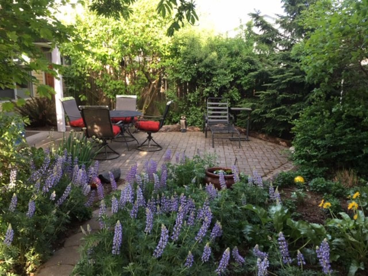 Guest have access to the private backyard. It has 100% native plants and yes, those are Gorge wildflowers blooming in Spring!