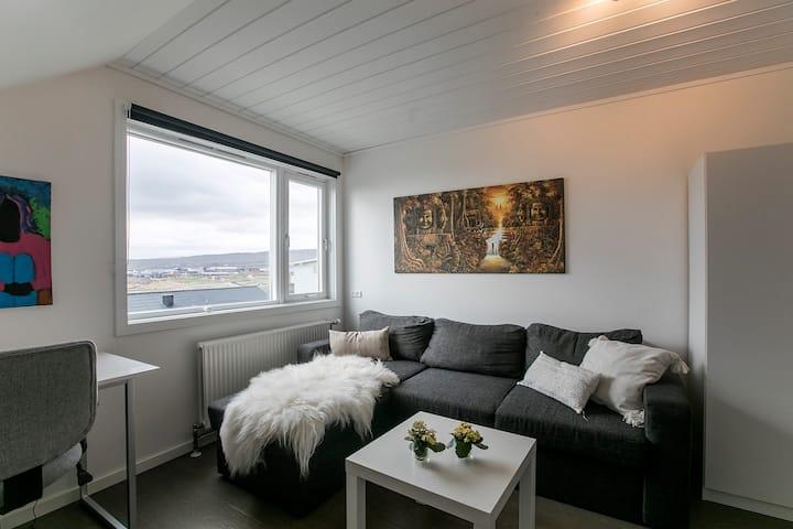 FaroeGuide with beautiful view
